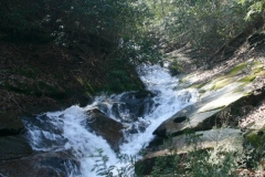 Oglethorpe Mountain Waterfalls