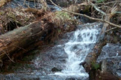 Sassafras Mountain Waterfalls