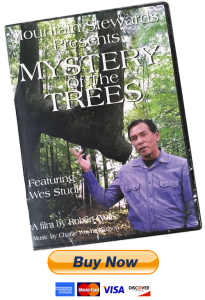 ORDER DVD – Mystery of the Trees