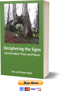 Order Book – Deciphering The Signs